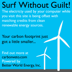 Carbon Offset Solutions for a website