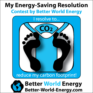 Energy-Saving_Resolution_300X300